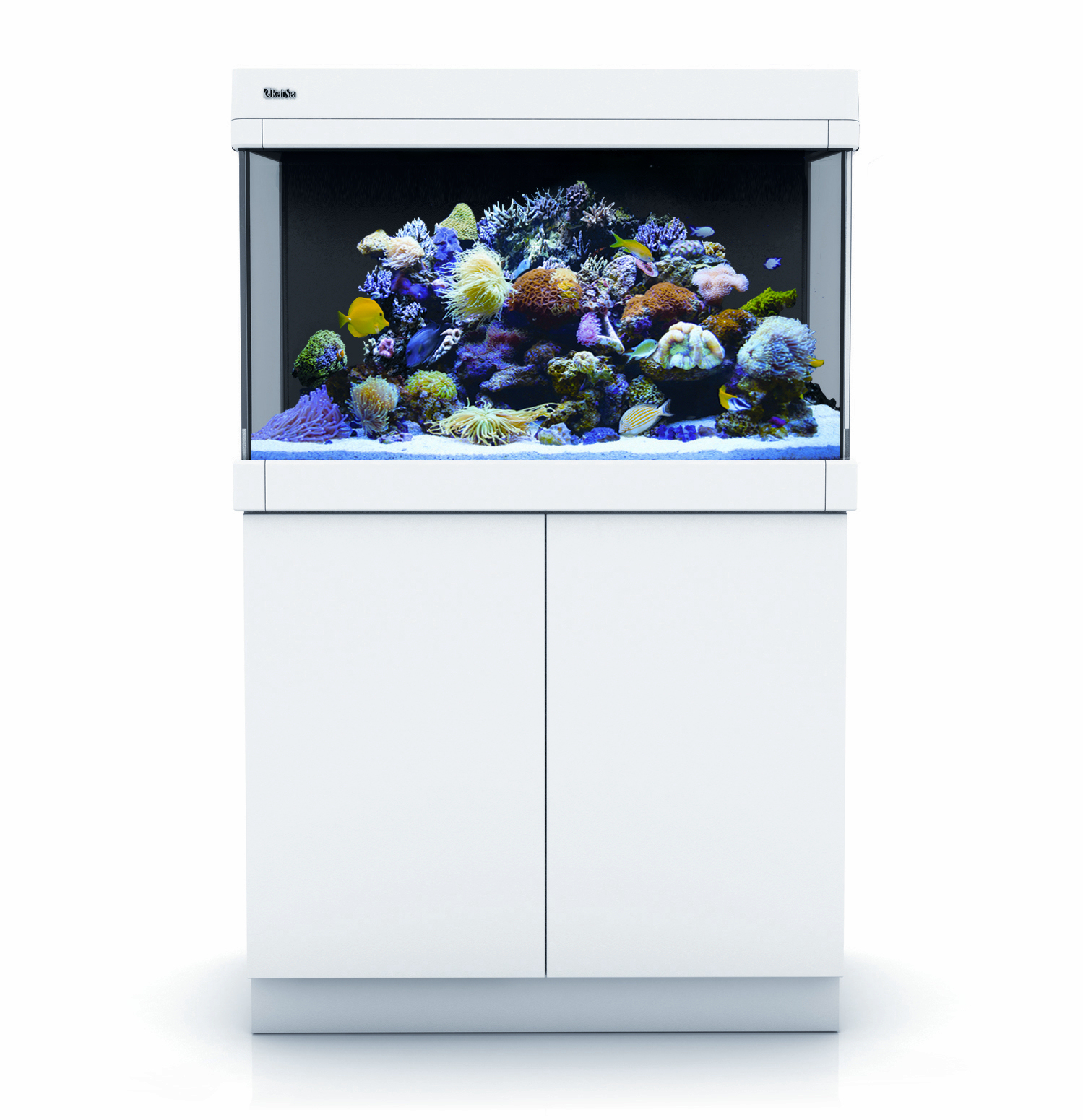 Aquariums red sea red sea max c 250 complet aqua meuble for Aquarium recifal complet